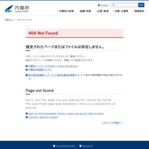 平成25年度の経済動向について(内閣府年央試算)