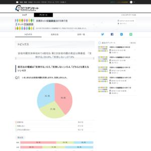 月例ネット世論調査2015年7月