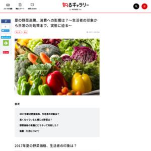 夏の野菜高騰、消費への影響は?~生活者の印象から日常の対処策まで、実態に迫る~