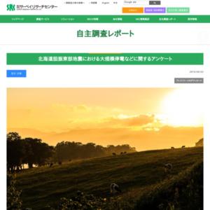 北海道胆振東部地震における大規模停電などに関するアンケート