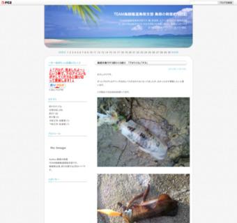 島根の刺客千葉釣り日記