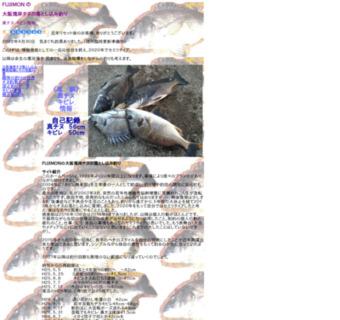 大阪湾岸のチヌの落とし込み