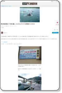 熊本県訪問記2 「天然の癒し、イルカウォッチング」天草湾のイルカたち:arfaさんの旅行ブログ by 旅行のクチコミサイト フォートラベル