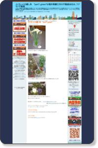 ふじもっとの癒し系 *part1 green* - 福井県鯖江市の不動産会社は、フジモト不動産