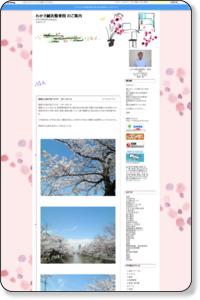 わかさ針灸整骨院   こころにも 優しい癒し : 福島江の桜が見ごろです 2011.04.18
