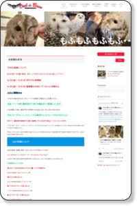 広島初のフクロウカフェ オウルドベース | フクロウと触れ合う癒しの空間