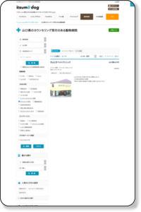 山口県のカウンセリング受付のある動物病院 itsumo dog山口版